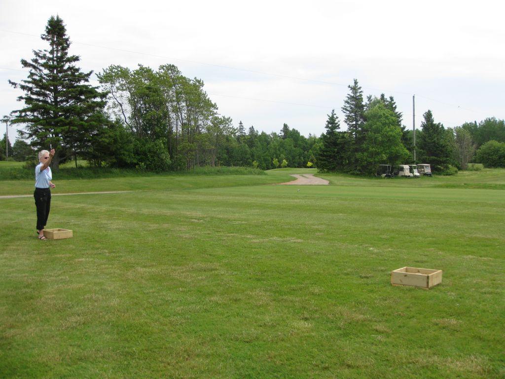 golf2011016