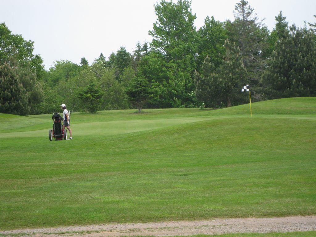 golf2011021