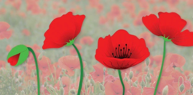No schedule changes this year for Remembrance Day Sunday and the Monday civic holiday