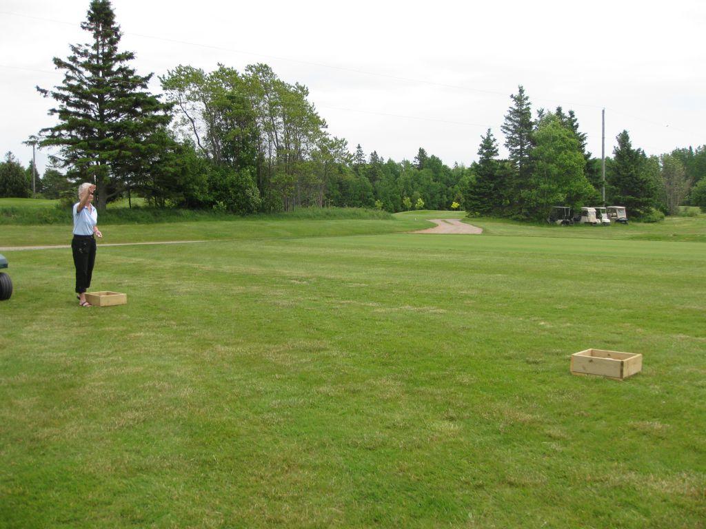 golf2011014